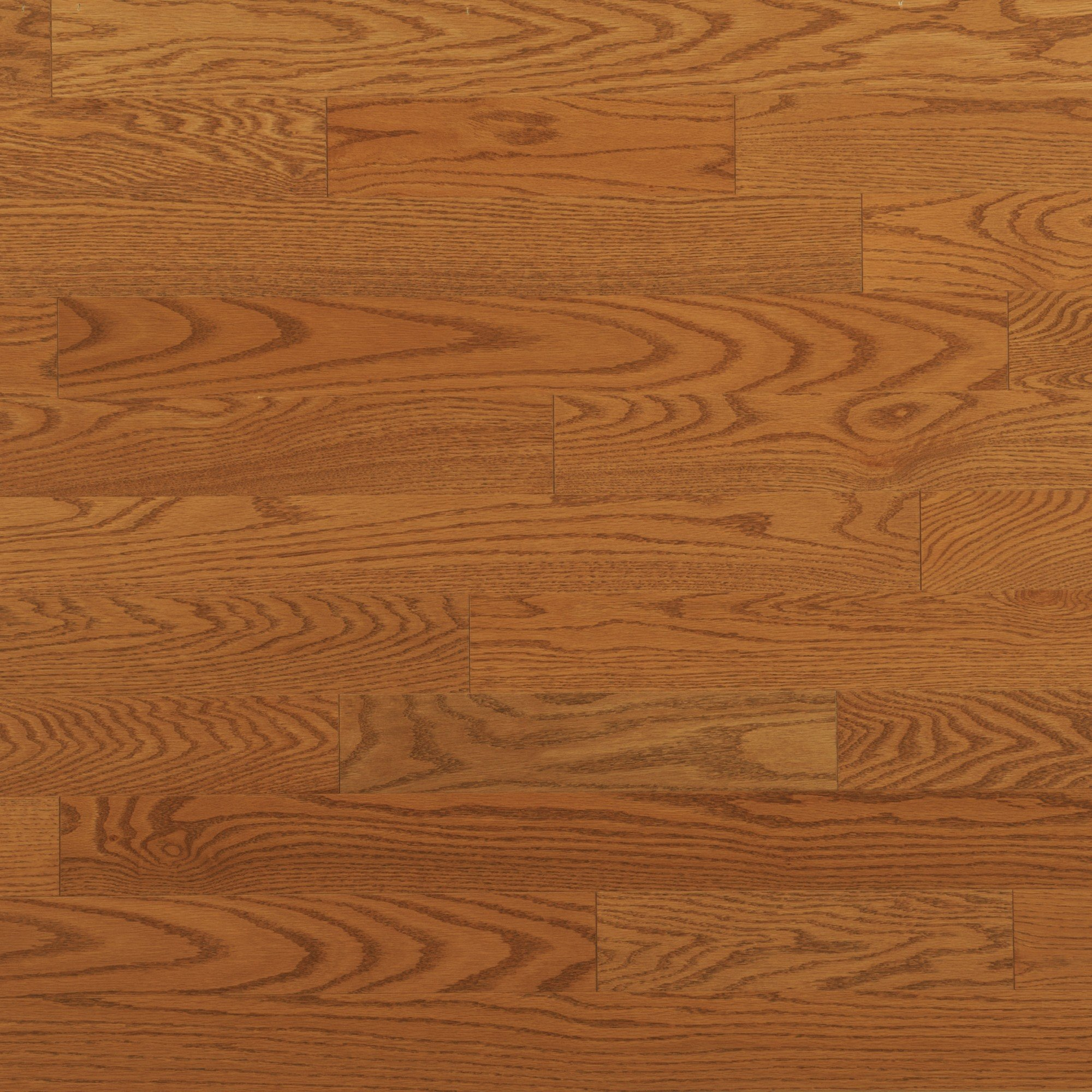 Red Oak Nevada Exclusive Smooth - Floor image