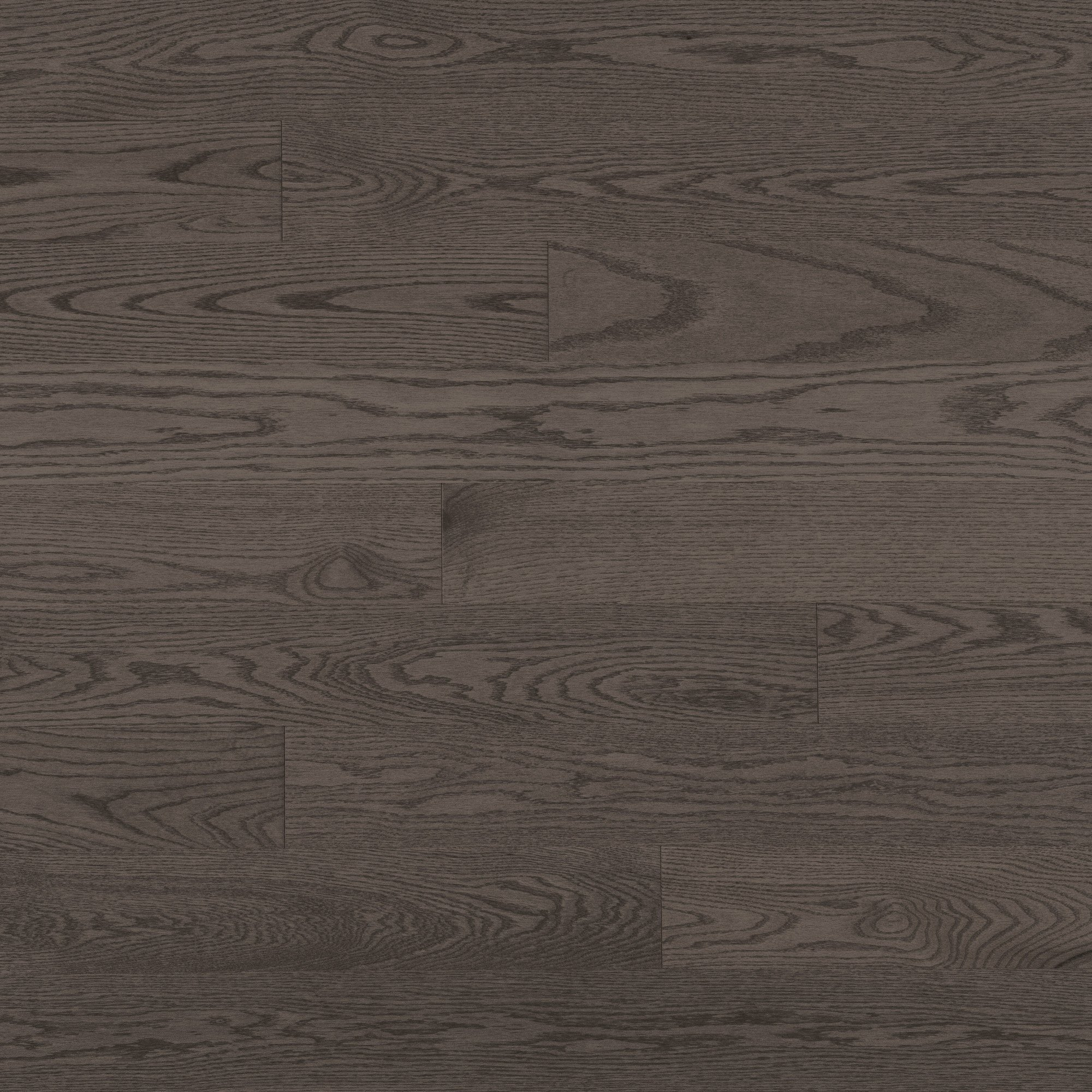 Chêne rouge Charcoal Exclusive Lisse - Image plancher