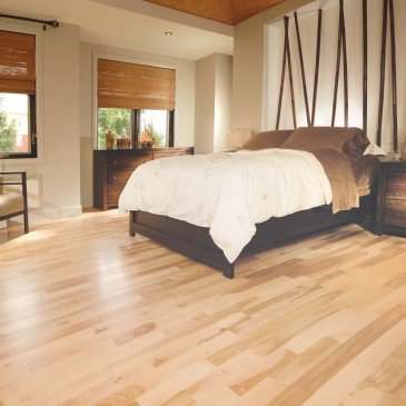 Yellow Birch Exclusive Smooth - Floor image