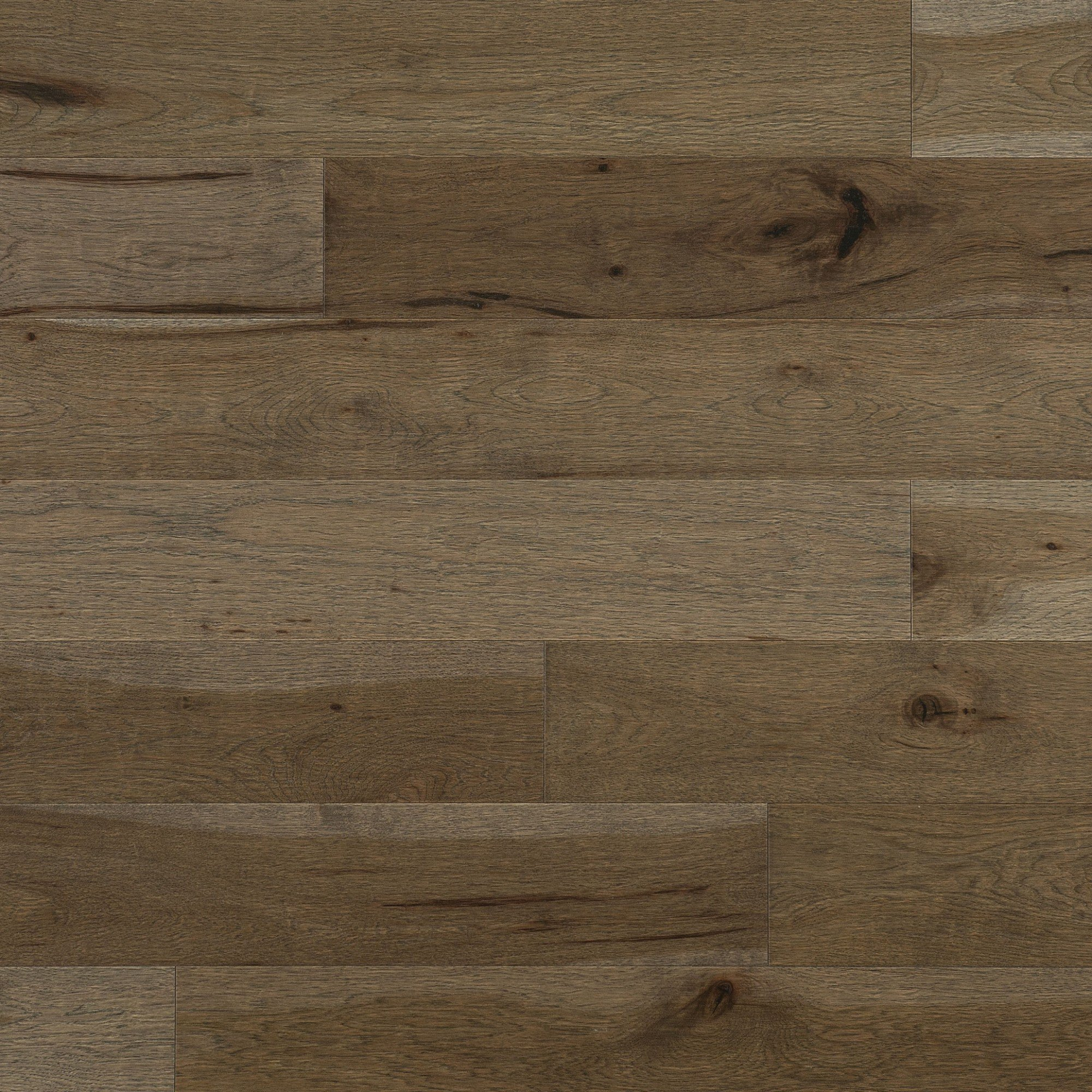 Hickory Fossil Caractère Aspect Vieilli - Image plancher