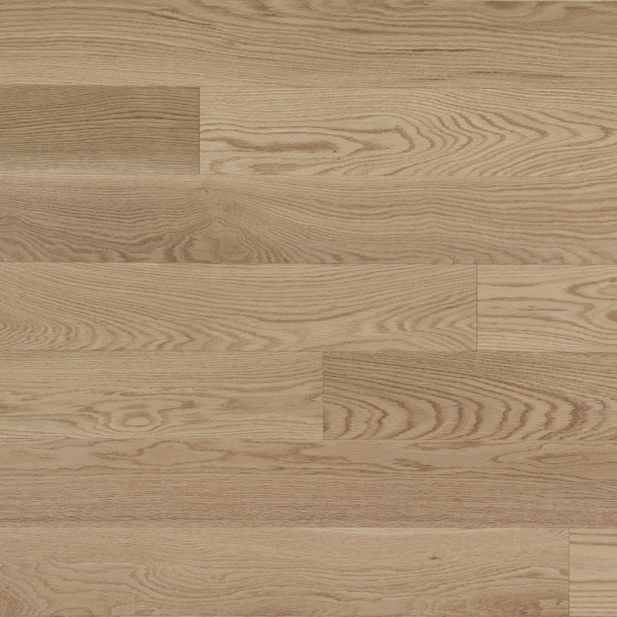 Red Oak Select And Better - Floor image