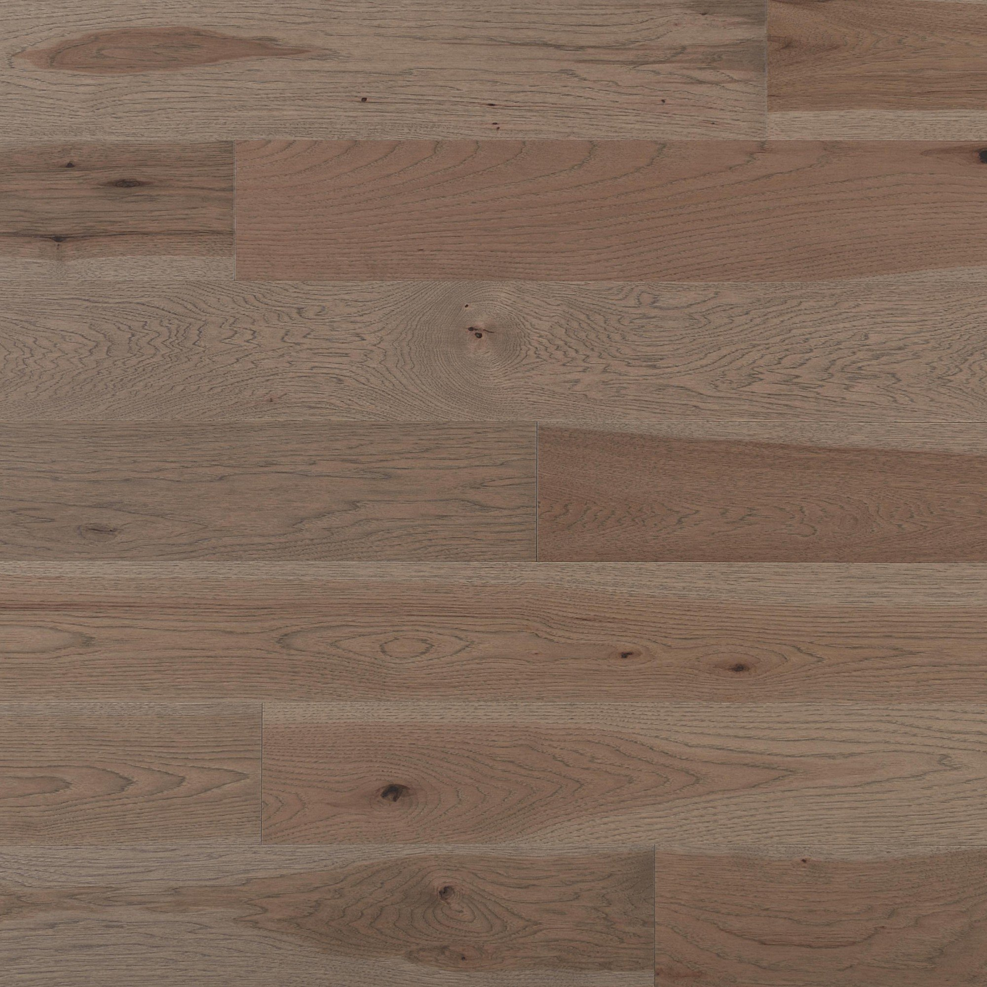 Hickory Greystone Caractère Lisse - Image plancher