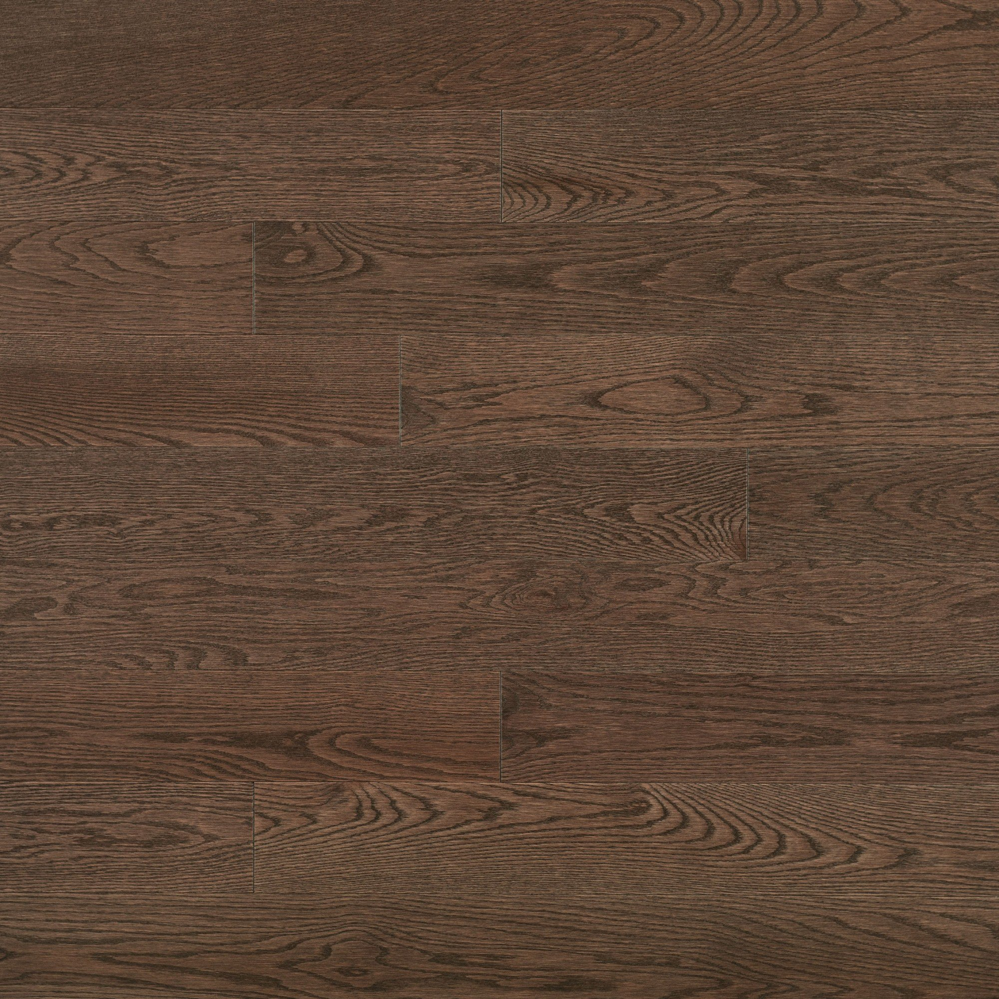 Red Oak Sepia - Floor image