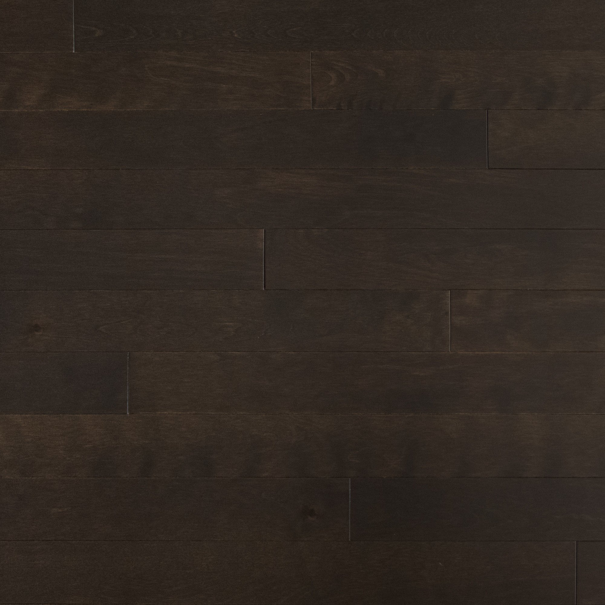 Yellow Birch Java Exclusive Smooth - Floor image