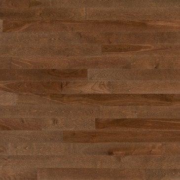 Yellow Birch Savanna - Floor image