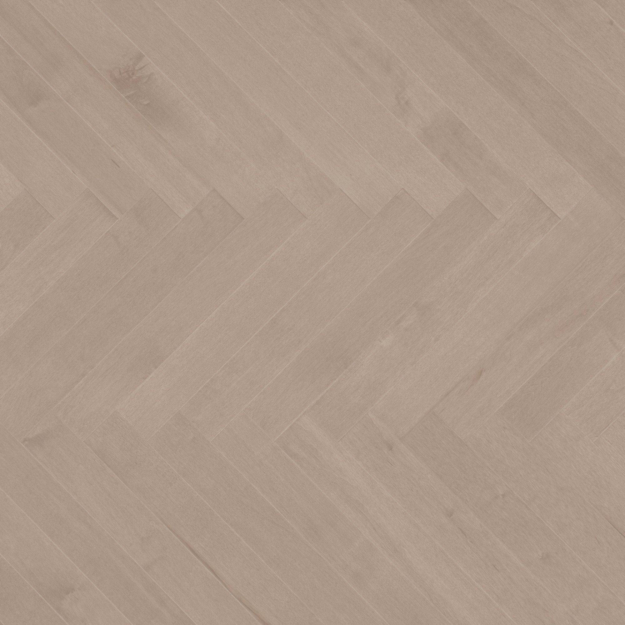 Maple Rio Exclusive Smooth - Floor image