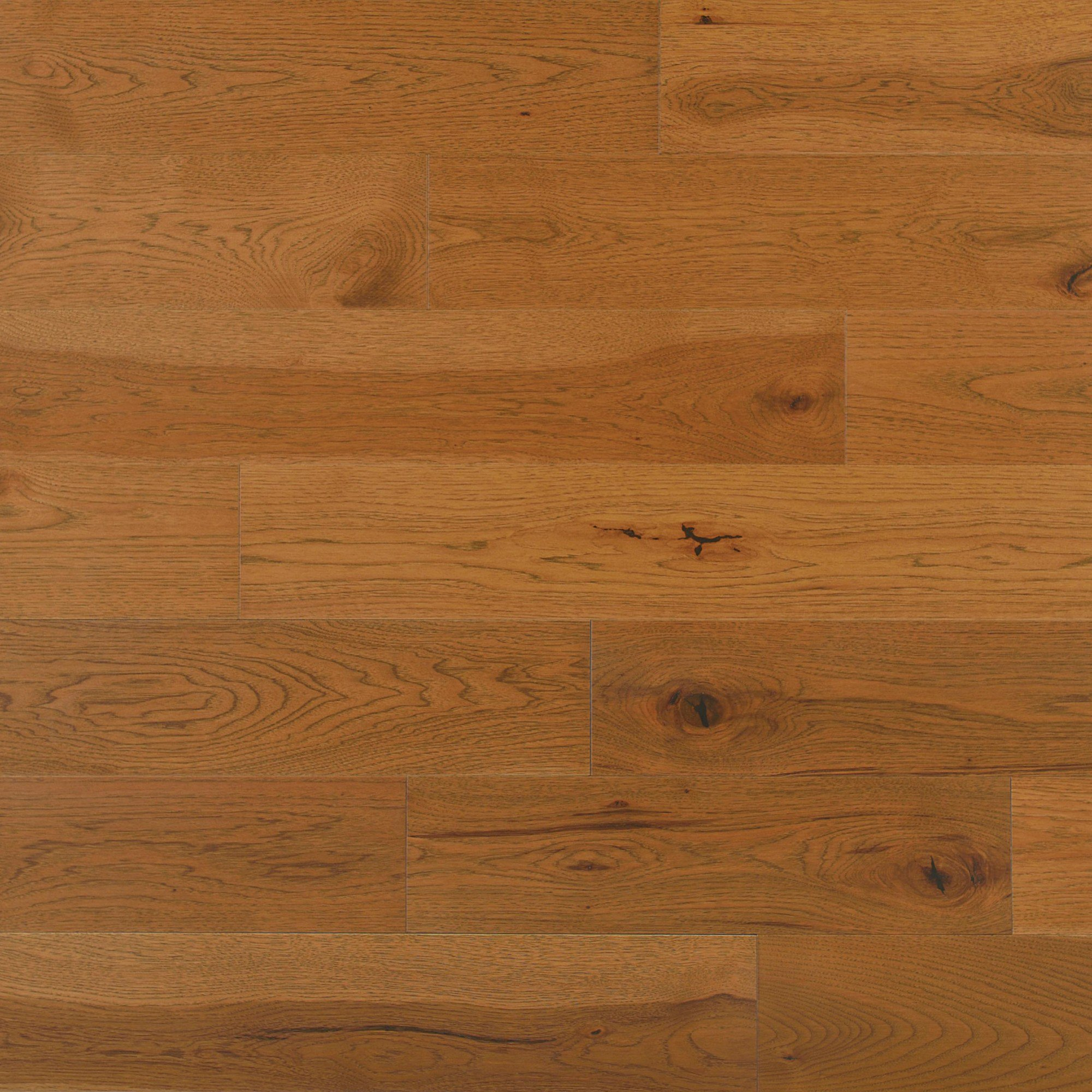Hickory Sierra Caractère Lisse - Image plancher