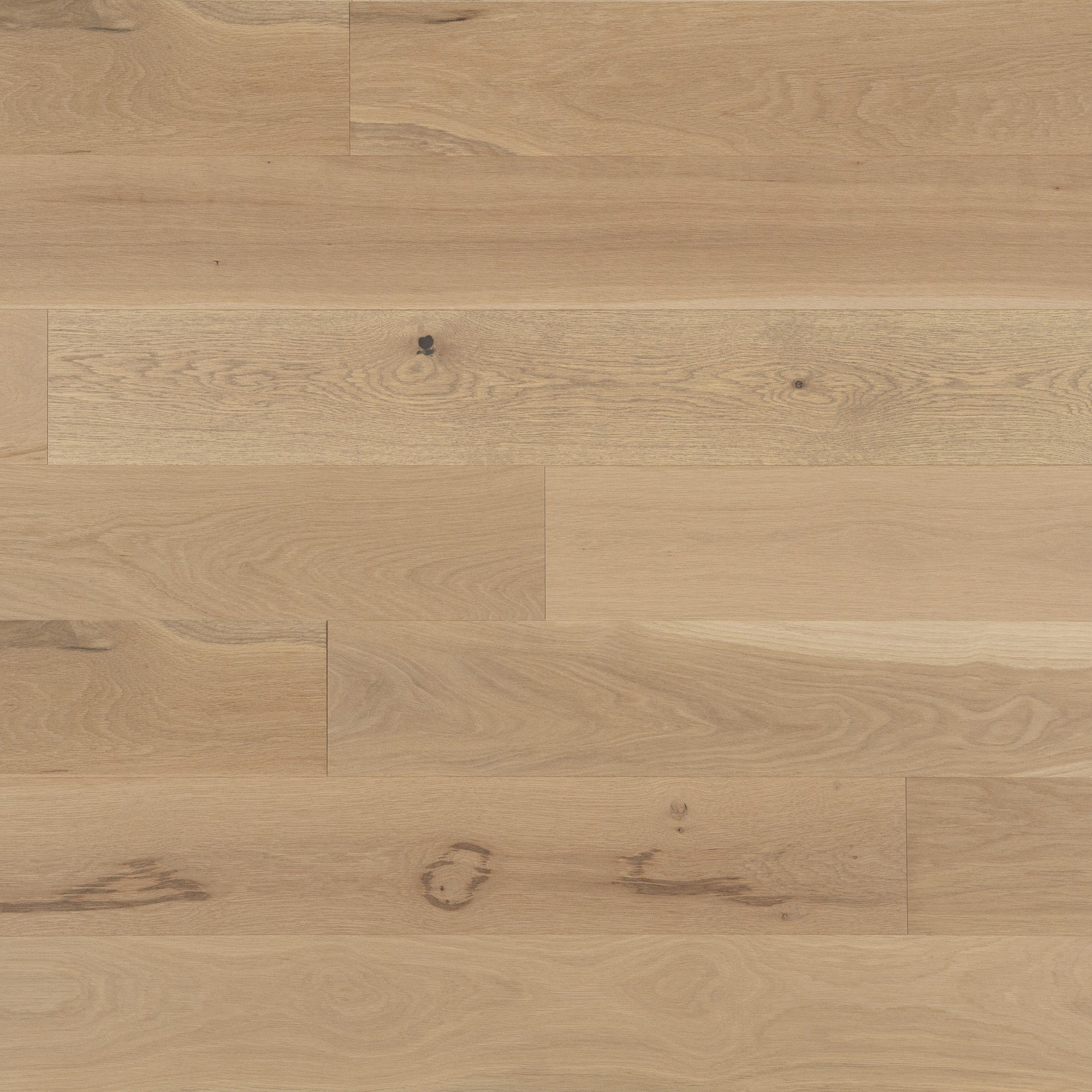 White Oak White Mist Light Character - Floor image
