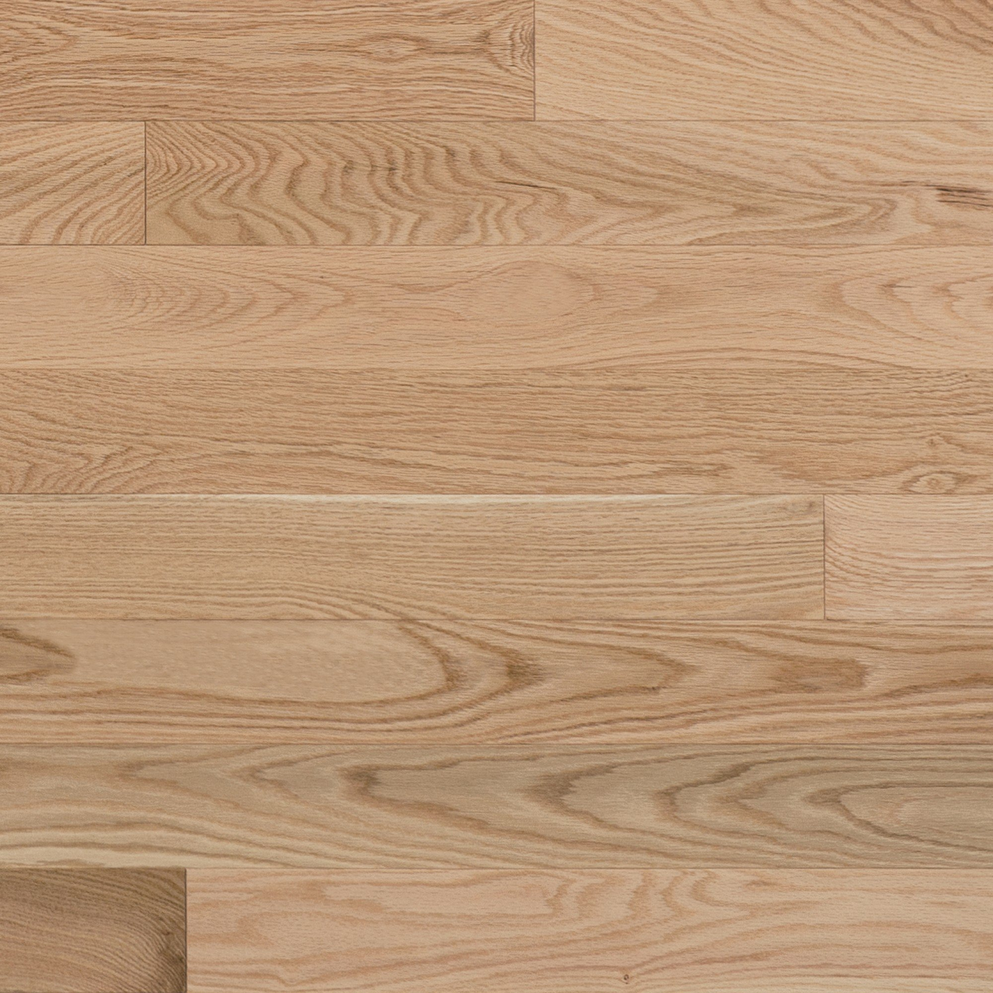 Red Oak Exclusive Smooth - Floor image