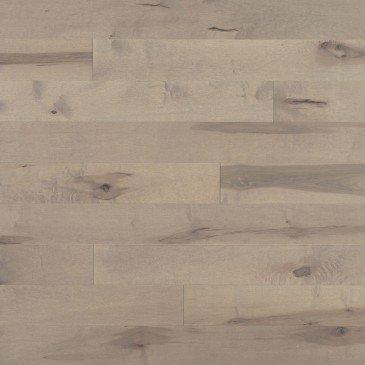Érable Sand Dune Caractère Prononcé