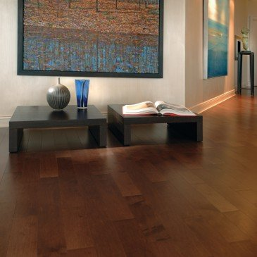 Brown Maple Hardwood flooring / Umbria Mirage Admiration / Inspiration