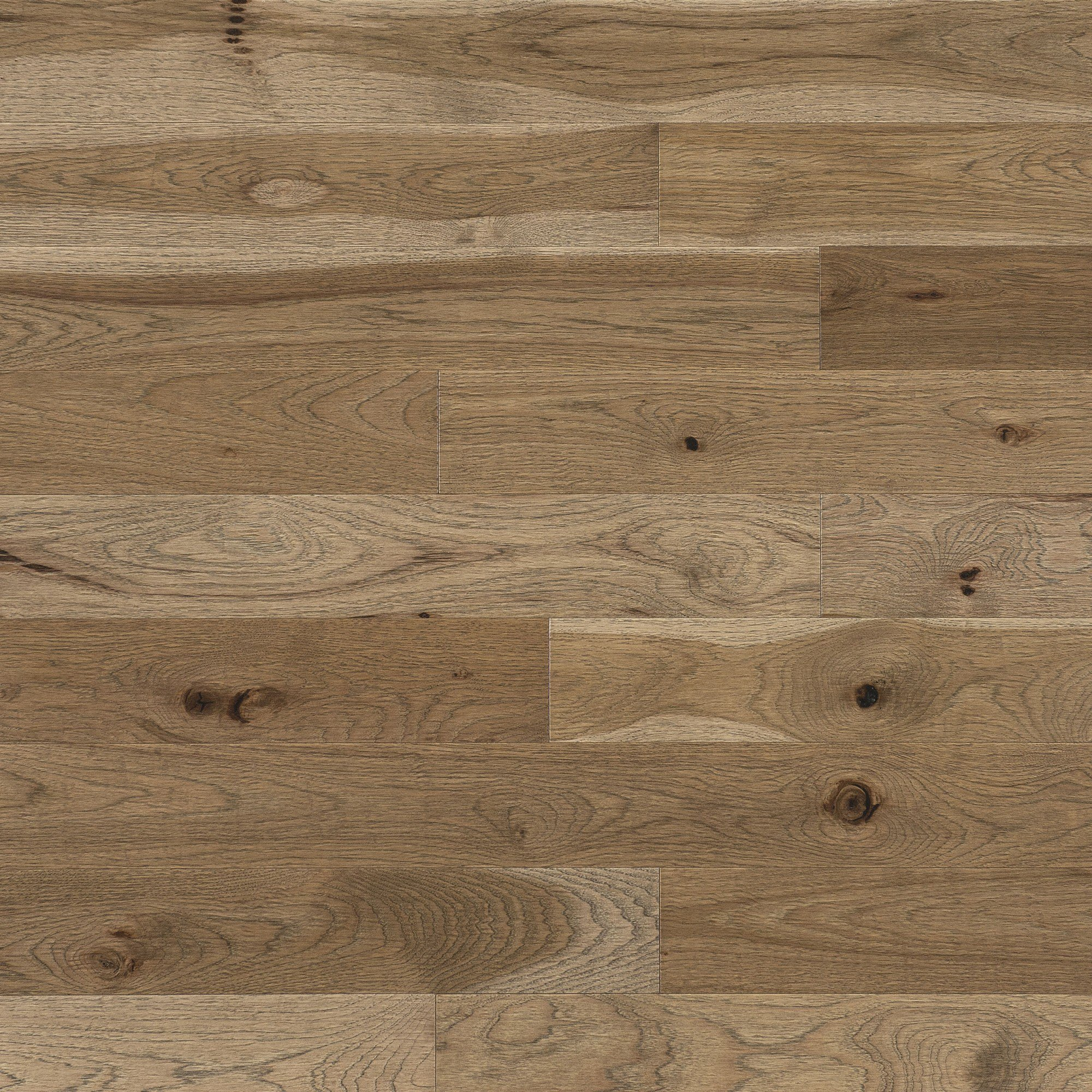 Hickory d'antan Seashell - Image plancher