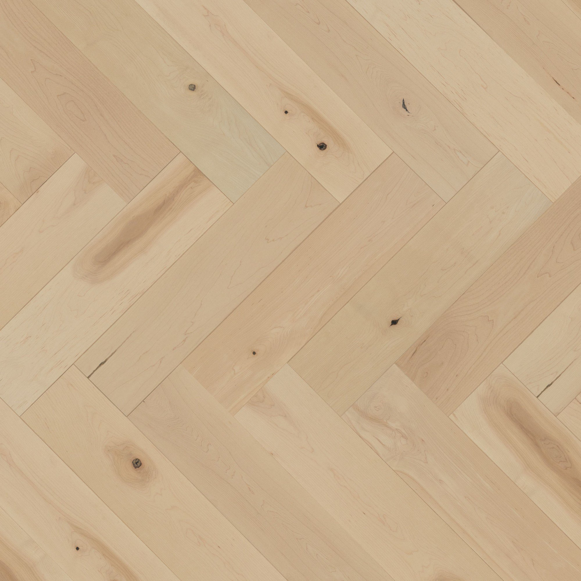 Maple White Mist Character Smooth - Floor image