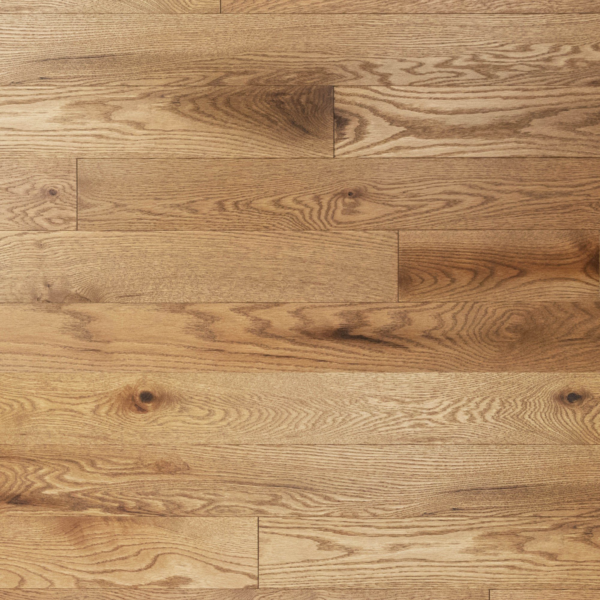 Red Oak Laguna Character Brushed - Floor image