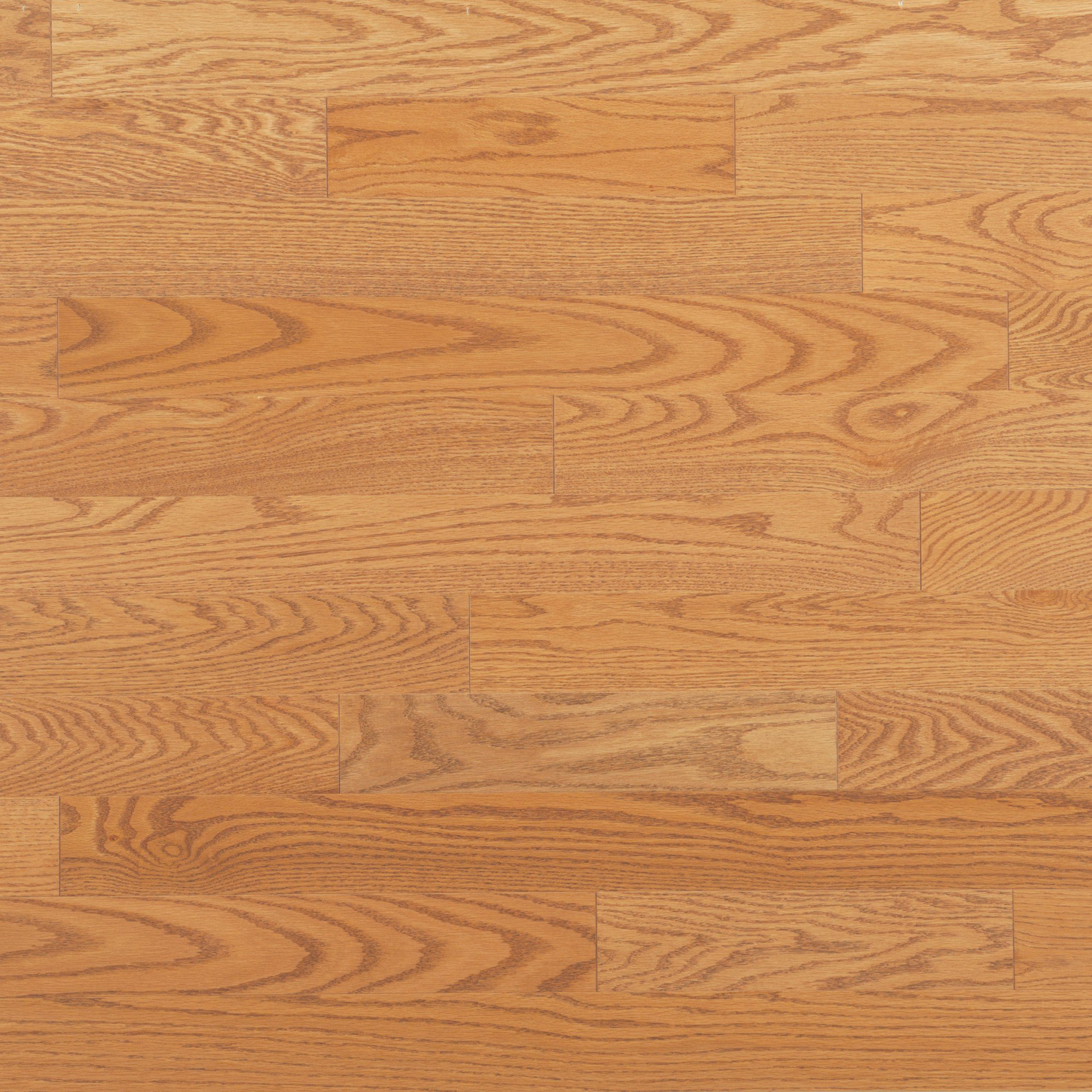 Red Oak Golden - Floor image