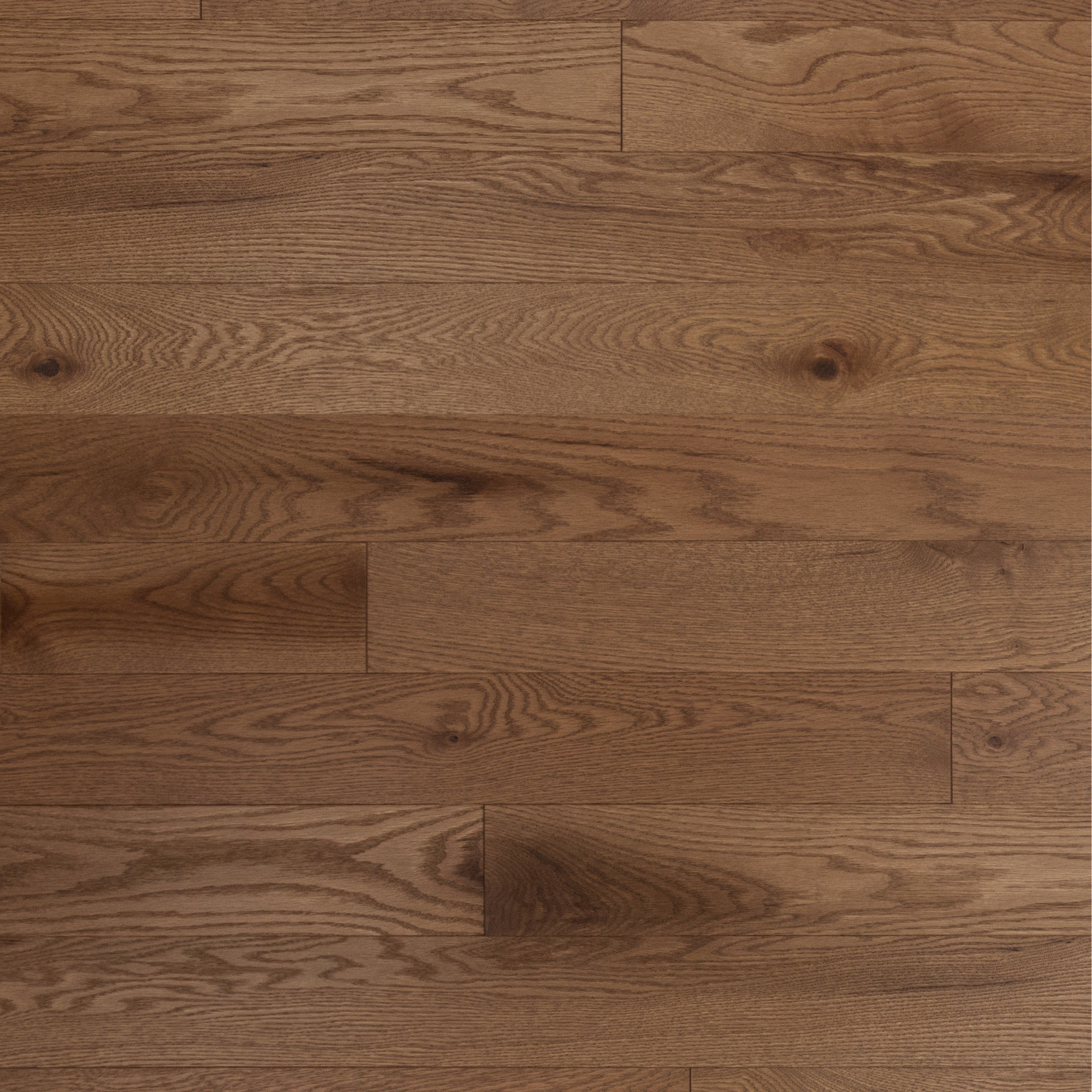 Red Oak Carmel Character Brushed - Floor image